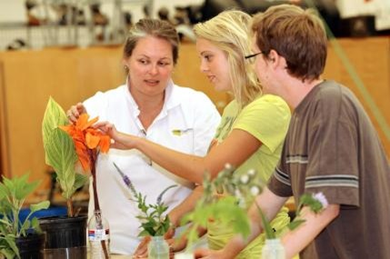Chattahoochee technical college horticulture for Chattahoochee tech interior design